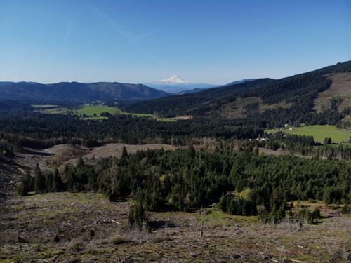 77.39 Acres in White Salmon, WA : White Salmon : Klickitat County : Washington