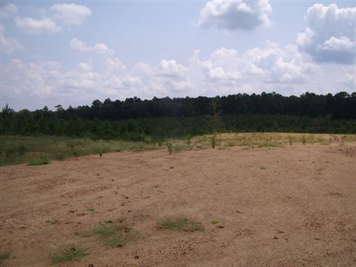 128.53 Acres in Roxie, MS : Roxie : Franklin County : Mississippi
