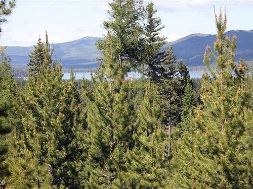 155 Acres in Kalispell, MT : Kalispell : Flathead County : Montana