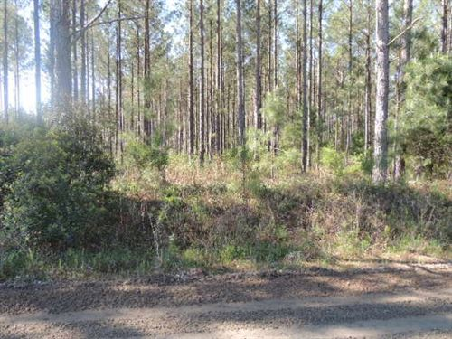 318.96 Acres in West Point, GA : West Point : Harris County : Georgia
