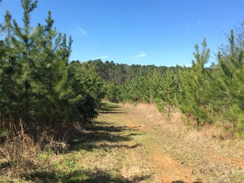 49.28 Acres in Hazlehurst, MS : Hazlehurst : Copiah County : Mississippi