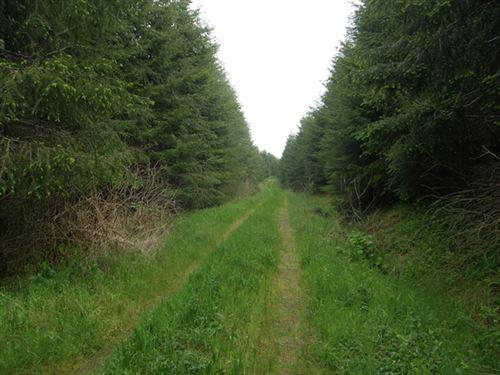 62.82 Acres in Montesano, WA : Montesano : Grays Harbor County : Washington