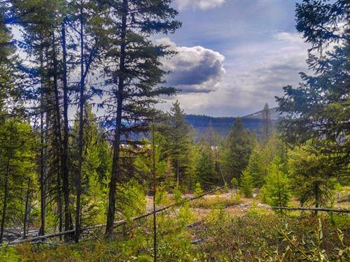 166.96 Acres in Kalispell, MT : Kalispell : Flathead County : Montana