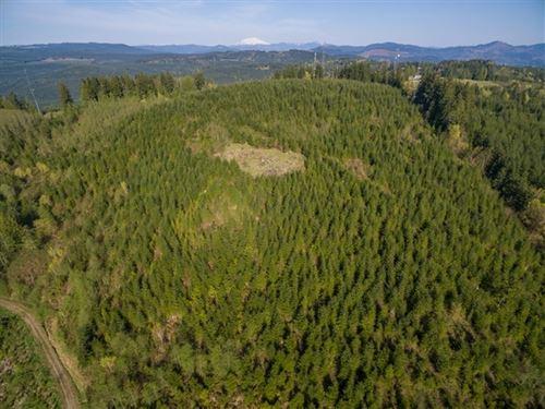 125.64 Acres in Kelso, WA : Kelso : Cowlitz County : Washington