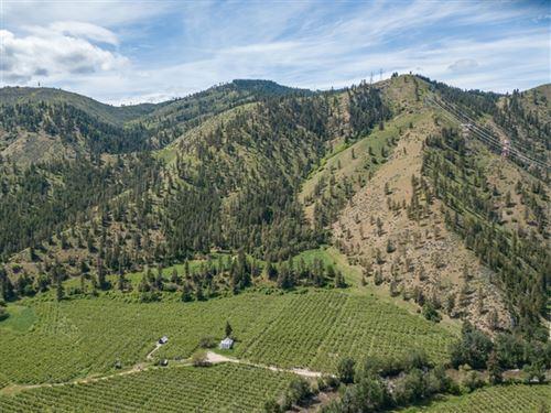 245.99 Acres in Entiat, WA : Entiat : Chelan County : Washington