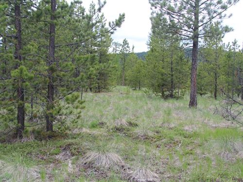 165.32 Acres in Kalispell, MT : Kalispell : Flathead County : Montana