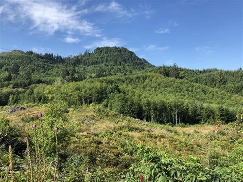 180.79 Acres in Cathlamet, WA : Cathlamet : Wahkiakum County : Washington