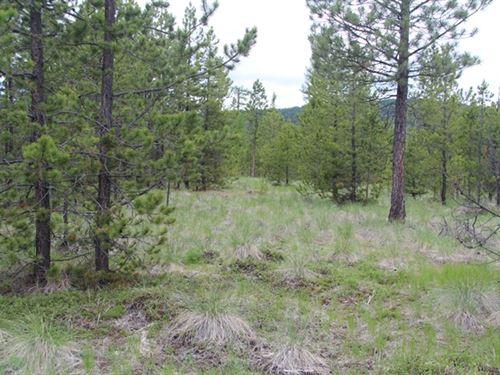 155.73 Acres in Kalispell, MT : Kalispell : Flathead County : Montana