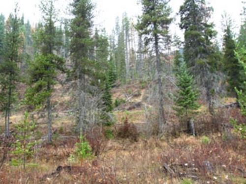 238.98 Acres in Thompson Falls, MT : Thompson Falls : Mineral County : Montana