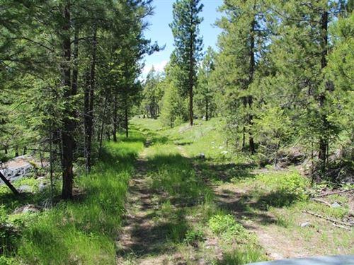 161.18 Acres in Kalispell, MT : Kalispell : Flathead County : Montana