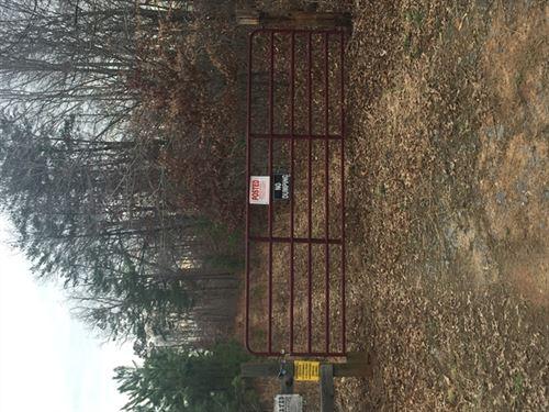 134.40 Acres in Appomattox, VA : Appomattox : Buckingham County : Virginia