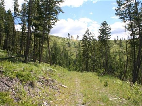 160.08 Acres in Kalispell, MT : Kalispell : Flathead County : Montana