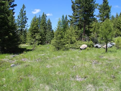 154.58 Acres in Kalispell, MT : Kalispell : Flathead County : Montana