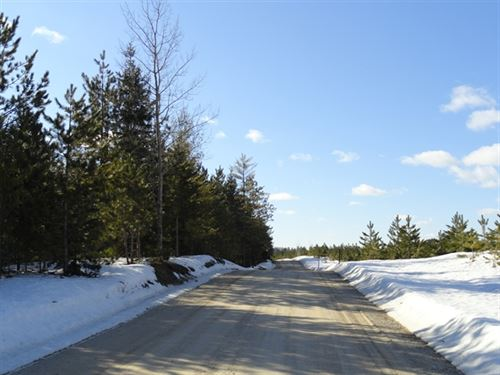 80 Acres in Manistique, MI : Manistique : Schoolcraft County : Michigan