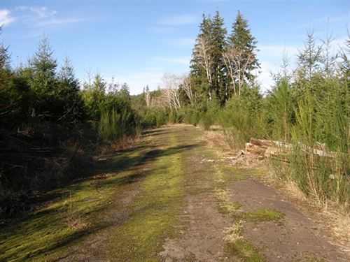 52.12 Acres in Central Park, WA : Central Park : Grays Harbor County : Washington