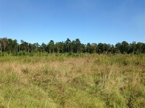 197.80 Acres in Clinton, LA : Clinton : East Feliciana Parish : Louisiana