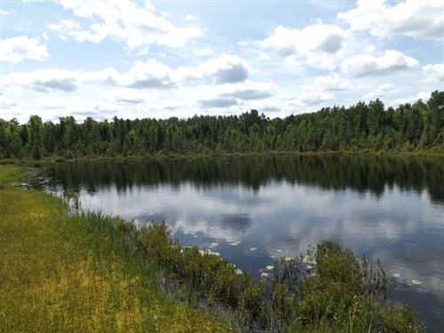 25 Acres in Republic, MI : Republic : Baraga County : Michigan