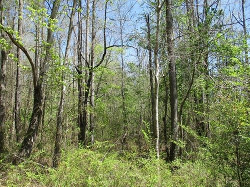 145.01 Acres in Marion, AL : Marion : Perry County : Alabama