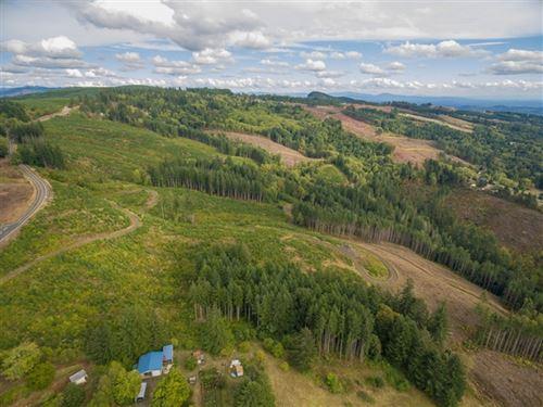 185.05 Acres in Kalama, WA : Kalama : Cowlitz County : Washington