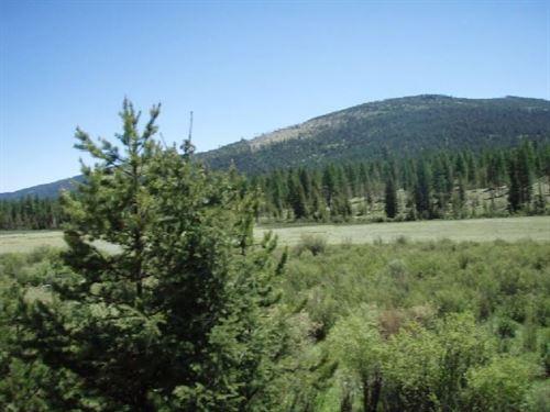161.79 Acres in Kalispell, MT : Kalispell : Flathead County : Montana