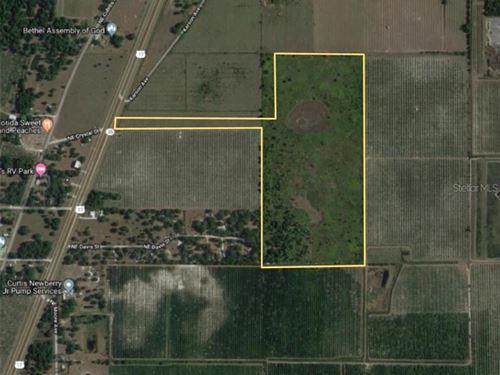 75 Acres in Arcadia, Florida : Arcadia : Desoto County : Florida