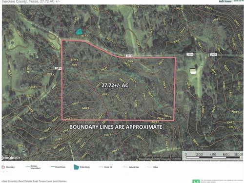 Rural East Texas Hunting Land : Alto : Cherokee County : Texas