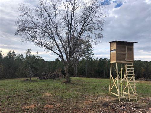 Deer And Turkey Hunters Dream Tract : Shiloh : Harris County : Georgia