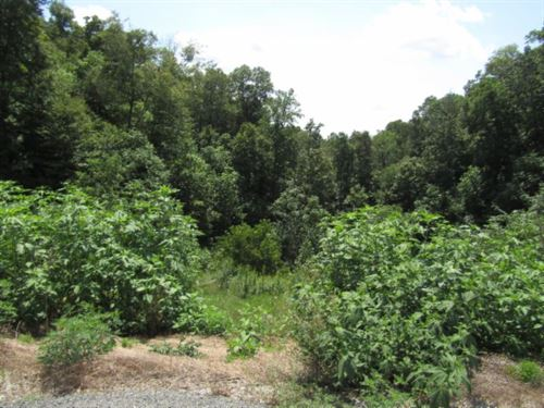 18.60 Ac, Mtn Views, Building : Celina : Clay County : Tennessee