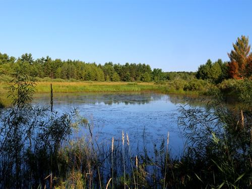 Pure Wildlife Sanctuary : Westfield : Marquette County : Wisconsin