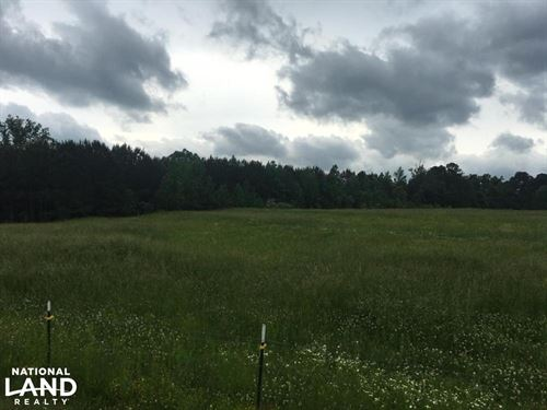 Oneonta Timber, Pasture & Hunting : Oneonta : Blount County : Alabama