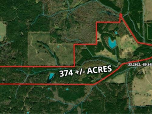 374 Acres In Carroll County In Vaid : Vaiden : Carroll County : Mississippi