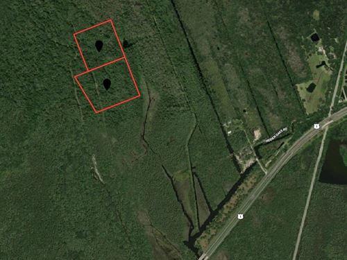 22 Acres In Rural Volusia County : Oak Hill : Volusia County : Florida