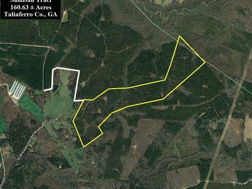 Samdan Tract : Crawfordville : Taliaferro County : Georgia