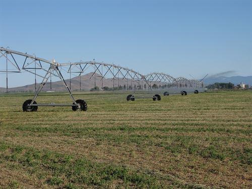 Quality Hay Ranch : Klamath Falls : Klamath County : Oregon