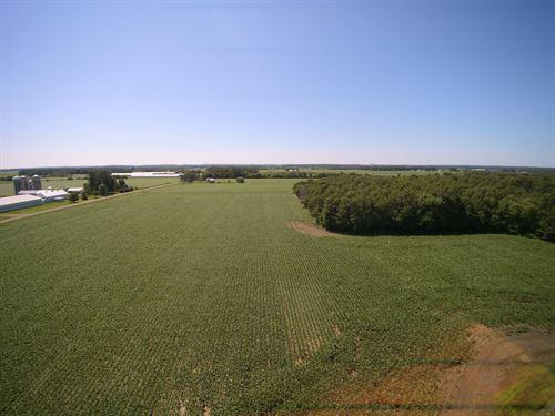 Amazing Farm And Hunting Woodlands : Barron : Wisconsin