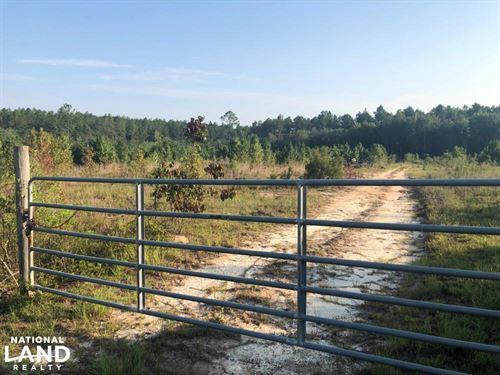 Mt, Vernon-Alston Road Recreational : Ailey : Montgomery County : Georgia