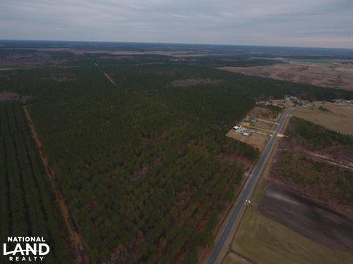 Joe William Rd Homesite/Timber Trac : Kinston : Lenoir County : North Carolina