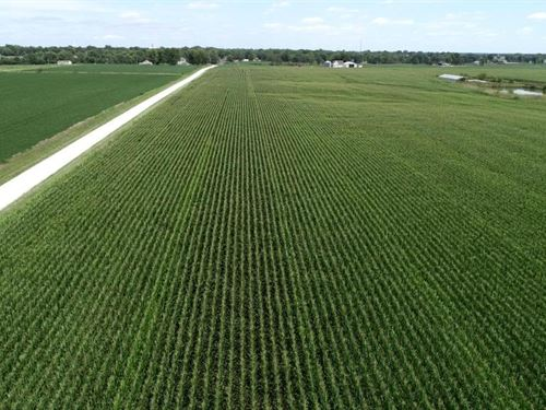 Online Only Tillable Row Crop Farm : Shelbina : Shelby County : Missouri