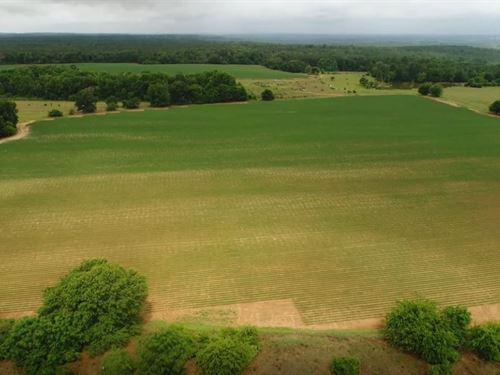 High Point Farms : Elko : Houston County : Georgia
