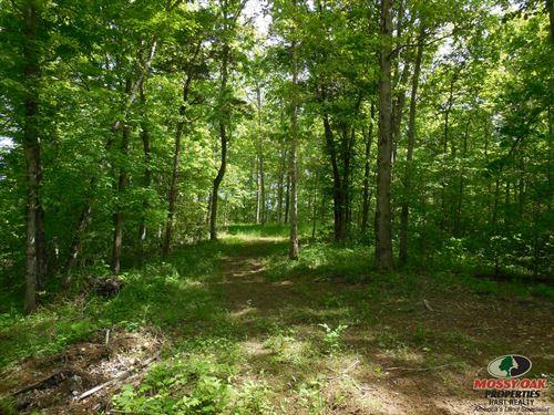 147 Creekfront Acres, Metcalfe Co : Dubre : Metcalfe County : Kentucky
