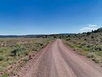 Lassen Hemp Cultivation Investment : Madeline Plains : Lassen County : California