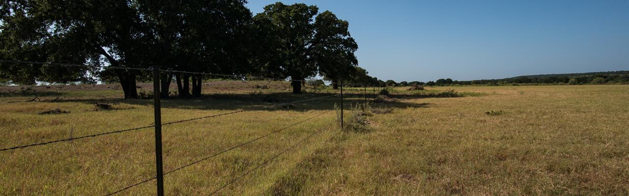 Magnificent Texas Farms For Sale Farmflip Home Interior And Landscaping Mentranervesignezvosmurscom