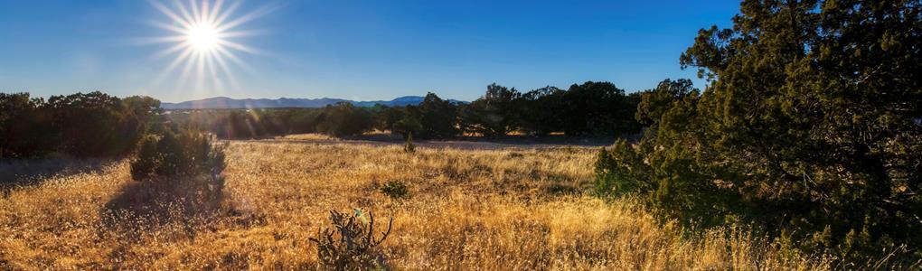 Beautiful 40 Acre Ranch Lot 20 : Corona : Torrance County : New Mexico