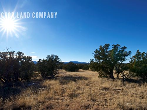 Beautiful 40 Acre Ranch Lot 15 : Corona : Torrance County : New Mexico