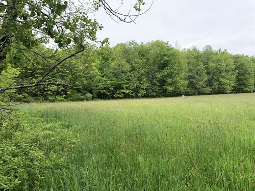 Borders Balsam Swamp State Forest : Pharsalia : Chenango County : New York