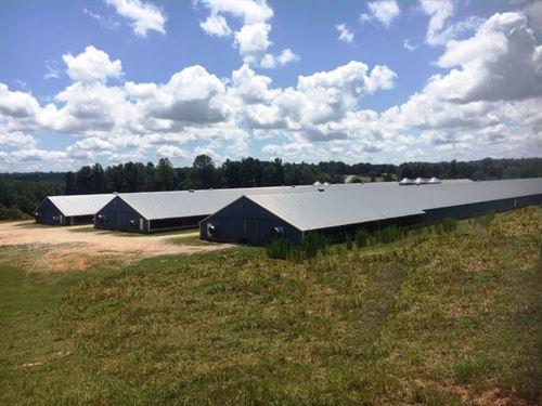 Three House Broiler Poultry Farm : Woodland : Randolph County : Alabama