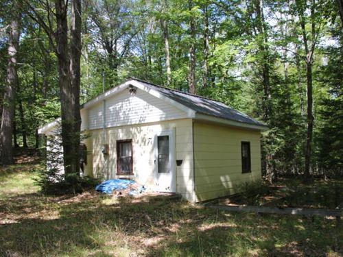 Northern MI Cabin 25 Acres Atlanta : Atlanta : Montmorency County : Michigan