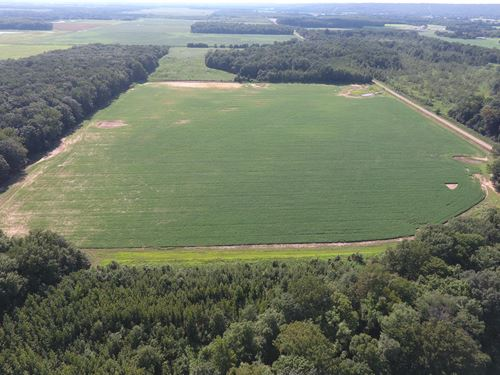 White County Arkansas Farms for Sale : FARMFLIP