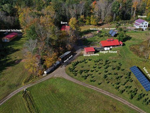 Justamere Maple Tree Farm : Worthington : Hampshire County : Massachusetts