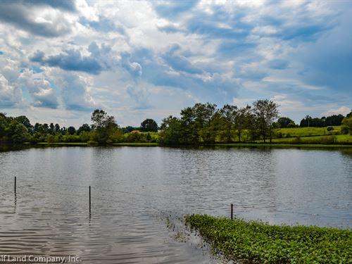 Private 27 Acre Horse Farm, Pond : Campobello : Spartanburg County : South Carolina